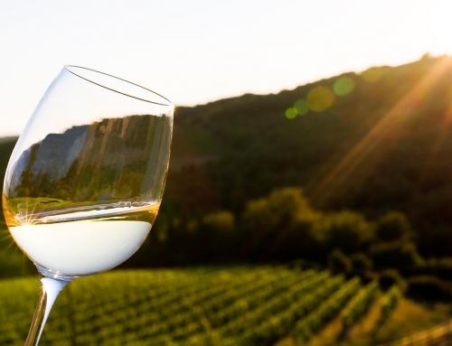 A proposito del vino…